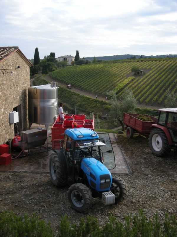 Tractor at winery